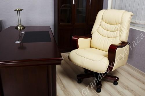 Esecutivo sedia elegante